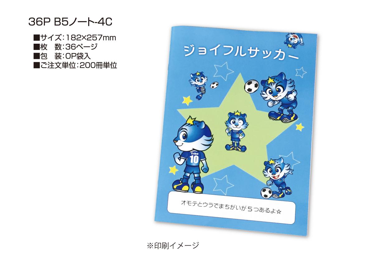 36p-B5note